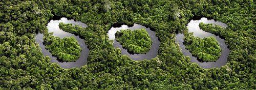 Amazónia para Sempre – Vídeo