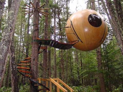 Casa nas Árvores
